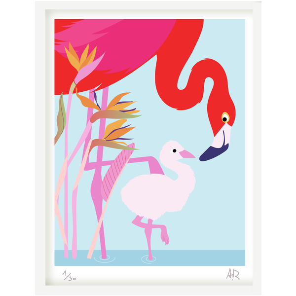 Art print Flamand rose